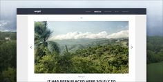 Weald - Flat Responsive Portfolio WordPress theme by visztpeter Weald is a Powerful, Responsive WordPress Theme, and its a great asset to any creative freelancer or agency. Everything is flexibl