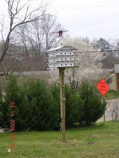 Purple Martin house and pole with hoist.