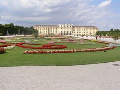 beautiful flowers schonbrunn Wien