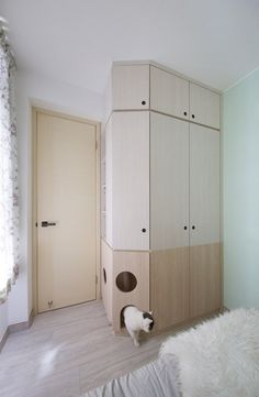 Teri's mother's bedroom wardrobe has an integrated cat house, while on the opposite side of the room, a series of built-in shelves are designed for the cat to use as platforms to jump between in order to reach the top of the cabinets that surround the bed.