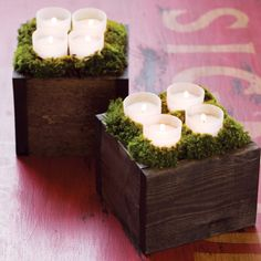 Botanic Candle Lit Boxes - All Gifts - Olive & Cocoa Glass Votive, Votive Candles, Holiday Fun, Holiday Gifts, Luxury Holiday, Holiday Decor, Olive And Cocoa, Candle Box, Party Centerpieces