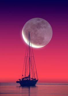 Velejar ao luar ~ Sailing in the moonlight Moon Moon, Full Moon, Big Moon, Moon Rise, Sky Full, Dark Moon, Beautiful Moon, Simply Beautiful, Beautiful World