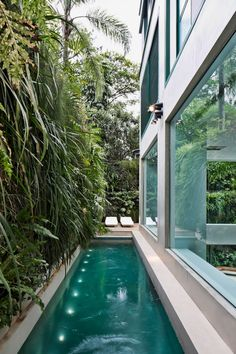 Everyone loves luxury pool layouts, aren't they? Below are some top listing of luxury swimming pool image for your inspiration. These wonderful pool design suggestions will certainly transform your backyard right into an outside oasis. Swimming Pool Designs, Swimming Pools, Lap Pools, Garden Swimming Pool, Langer Pool, Kleiner Pool Design, Vertical Green Wall, Piscina Interior, Small Pool Design