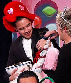 Liam and Niall with a cat on Jimmy Kimmel Live