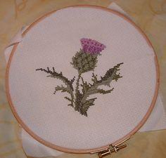 Thistle cross stitch