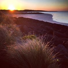 Looks like it's going to be a perfect day! #happyfriday #springtime #portfairy #walkthedog by merrijigkitchen http://ift.tt/1UokfWI