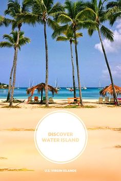 Visit Water Island, the fourth island of the U.S. Virgin Islands. This off-the-beaten-path gem is easy to explore and just a short boat ride away from St. Thomas. Once you arrive, you'll find quiet beaches, incredible snorkeling and some of the tallest palm trees you've ever seen. Click the pin to start building your island hopping itinerary. #RealNice
