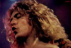 Robert Plant, c.1977.