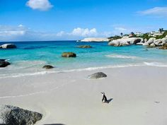 My fav beach ..