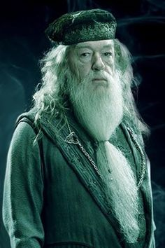 I like the book Dumbledore better than the film Dumbledore. Harry Potter Film, Always Harry Potter, Michael Gambon, Oliver Wood, Harry Potter Halloween, Harry Potter Hermione, Albus Dumbledore, I Movie, Hogwarts
