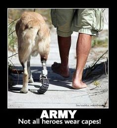 not all wounded warriors are human. Canines play an integral role in counter-insurgent ops.  One more reason to love dogs <3