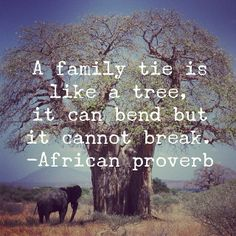 African wisdom. We love this quote about family.