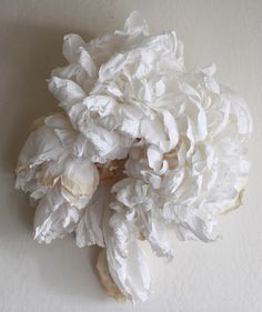 Artist Crafts Incredibly Realistic Gigantic Flowers Out of Paper - My Modern Met