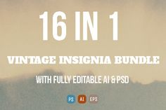 Check out 16 in 1 Vintage Insignia Bundle by ONESMFAPRO on Creative Market