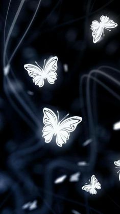 I am so well-branded that people send me butterflies all the time. Come see my FB page The Social Butterfly Media Marketing Flowery Wallpaper, Butterfly Wallpaper, Black Wallpaper, Butterfly Painting, Butterfly Flowers, Beautiful Butterflies, Cellphone Wallpaper, Iphone Wallpaper, Cute Wallpapers