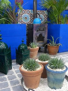 Best small garden design ideas from the Young Gardeners competition Shuttleworth College Moroccan-inspired garden with outdoor kitchen area including wood burner - great courtyard design for small gardens