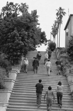 The Echo Park Stairways: Baxter Stairway takes you to the walking trails of Elysian Park