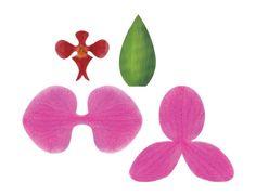 orchidée en papier a faire soi meme