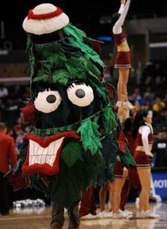 """The Stanford Tree"" - Stanford University"