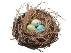 """Artificial Bird Nest with Eggs in Blue and Green 5"""" Diameter"""