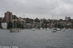 Canon 400d - 18-55 mm lens - 35mm - ISO 200 - F10 - 1/250 - Late morning / early afternoon - cloudy / rainy / crappy - hand held - Sydney Harbour - 09/02/2015