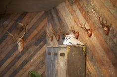 I Love Dust's London Studio - I love this pic of the Jordan's surrounded by reclaimed wood.