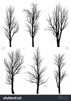 Set of vector silhouettes of birch trees without leaves during the winter or spring period.