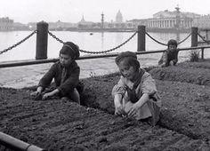 Leningrad. 1943.