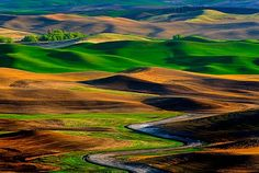 Travel destination ... the Palouse valley attracts photographers from around the world
