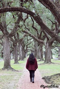 Perfect area in Houston to take beautiful pictures. Located in Houston, TX on South Boulevard. The Oak trees are amazingly tall and beautiful.