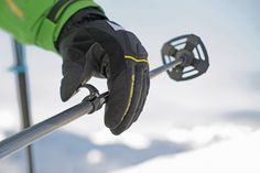Home - Fischer Sports Ski Equipment, Season 12, Ski And Snowboard, Ranger, Skiing, Sports, Ski, Hs Sports, Sport