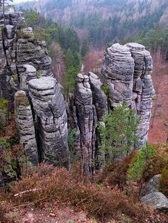 Rocks like fingers - Prachov, Liberecky ☮ * ° ♥ ˚ℒℴѵℯ cjf Beautiful Places In The World, Central Europe, Natural World, Czech Republic, Prague, Winter Wonderland, Amazing Photography, Poland, Lesy