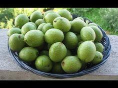 Tratamente naturiste cu coji de nuca verzi - YouTube Mai, Arsenal, Medical, Youtube, Crafts, Green, Plant, Manualidades, Medicine