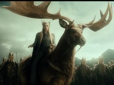 Things I have always wanted in my life: 1) a battle moose 2) Elves 3) to live in middle earth... This is perhaps the most amazing thing ever