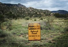 Sandia National Park New Mexico   ... park in the open space of the sandia mountains above albuquerque, new
