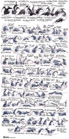 All the Republican rats - The Washington Post