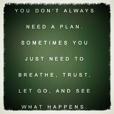You Don't Always Need a Plan - Sometimes You... #Quote #Inspiration — Framed Lightscap3s, LLC