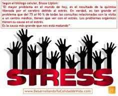 El estrés está detrás de muchos de los males de hoy en día.