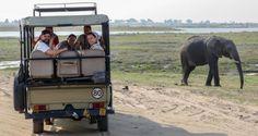 Parque Nacional de Chobe, un safari diferente por Chavetas