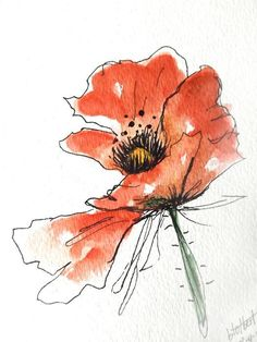 "Original artwork of a red poppy rendered in pen, ink and watercolor. It is titled ""Red Blowing Watercolor Poppy"" and is signed and dated at the bottom with the title on the back. This lovely free spirited poppy seems to be blowing in the wind. Very animated and looks great against"