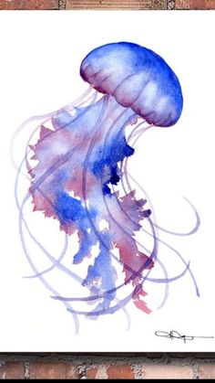 """""""Jellyfish"""" by David Rogers - Watercolor Animals - Squid Drawing, Jellyfish Drawing, Watercolor Jellyfish, Jellyfish Painting, Watercolor Sea, Watercolor Animals, Jellyfish Tattoo, Watercolor Paintings, Jellyfish Tank"""