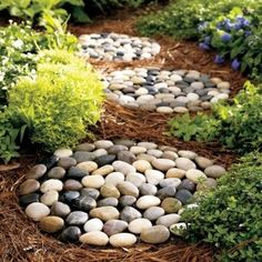 River Rock Stepping Stones - Make a pathway in no time with premade river rock stepping stones. These not only add function, but also textur...