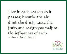 my meller: Happy Monday #6  Live in each season as it passes; breathe the air, drink the drink, taste the fruit, and resign yourself to the influences of each. ~Henry David Thoreau