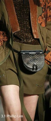 A new take on a trend that we thought died a while ago. These embellished pretty bags are only a slight resemblance to what we remember as fanny packs. They seem more like belts than purses. (photo: fashionisers) #fannypacks #alexanderdavid #handbags #fall2016 #falltrends #ootn #ootd #prada #chanel #philliplim