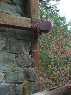 lime kiln in bloom with Current bush On San Juan Island photo by Joanne