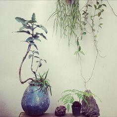 Makino0a on Instagram