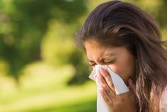 Watch This Video Exalted Remedies for Sinusitis and Allergies Ideas. Graceful Remedies for Sinusitis and Allergies Ideas. Home Remedies For Allergies, Allergy Remedies, Allergy Symptoms, Flu Remedies, Common Food Allergies, Pollen Allergies, Seasonal Allergies, Congestion Relief, Chest Congestion