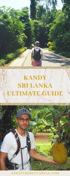 Kandy Sri Lanka: The Ultimate Travel Guide - Ashley Rebecca Sri Lanka Itinerary, Take Off Your Shoes, Most Luxurious Hotels, Tourist Sites, Buddhist Temple, Unique Flowers, Ultimate Travel, Travel Couple, Kandi