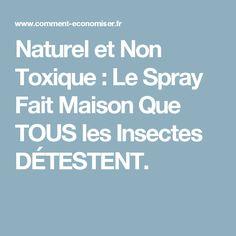 Naturel et Non Toxique : Le Spray Fait Maison Que TOUS les Insectes DÉTESTENT.