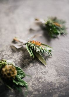 Winter Buttonholes - Stylish Winter Wedding Inspiration With Firs Foliage & A Muted Colour Palette Styling by Blue Wren Barn Images by John Barwood Photography